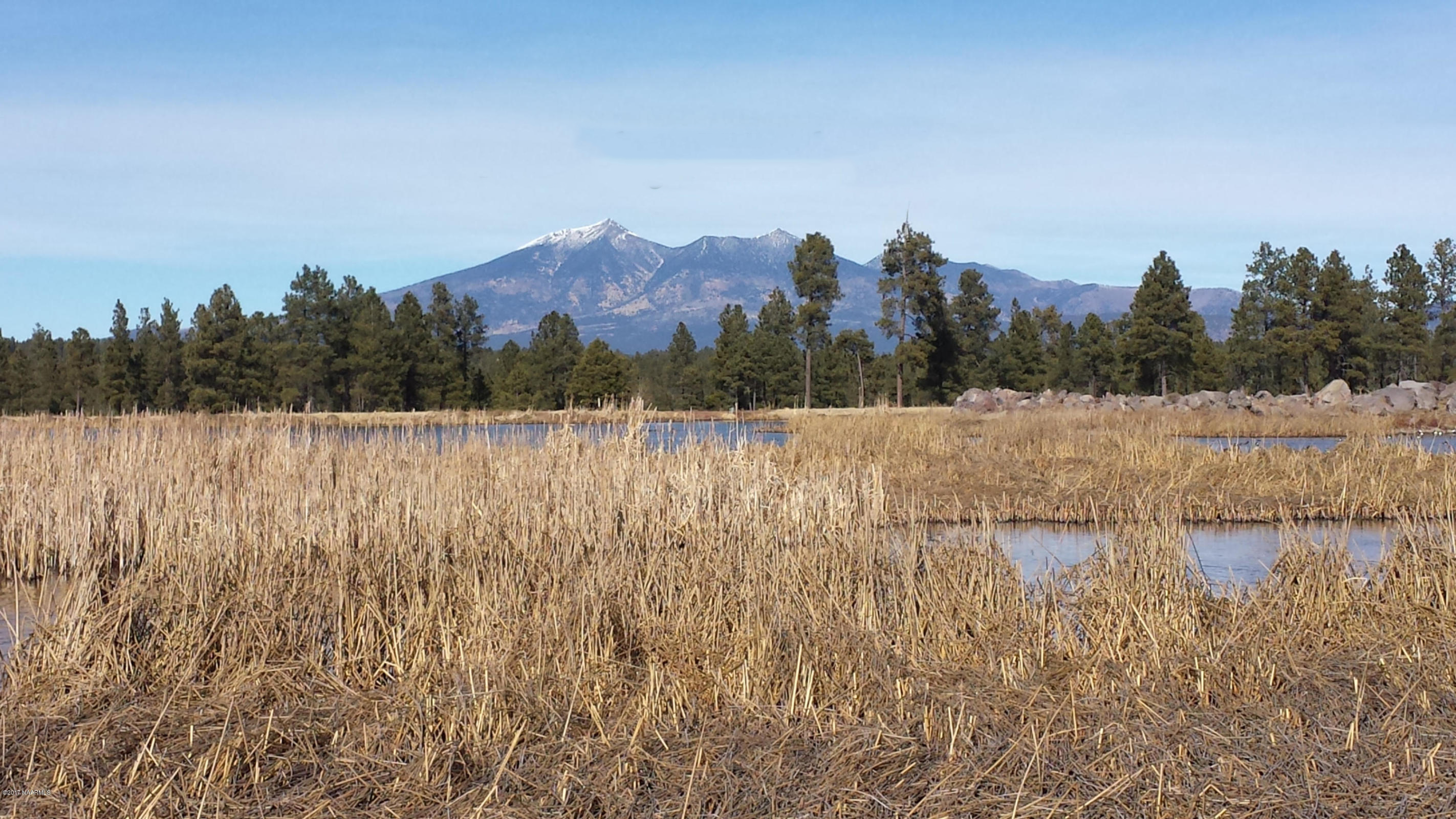 Top 10 Reasons to Love Living in Flagstaff